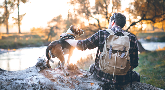 Man with dog on a break from hiking